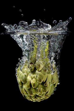 submerge: Fruit splash