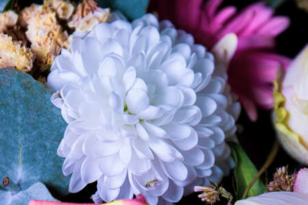 bouquet of flowers, in the center is a beautiful white flower