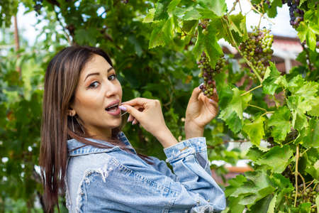 pretty young girl in the vineyard, pretty young girl in the garden, young girl with grapes