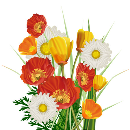 yellow wildflowers: A beautiful bouquet of poppies and daisies isolated on white background
