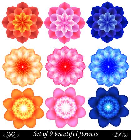 orange swirl: Set of 9 beautiful colored flowers