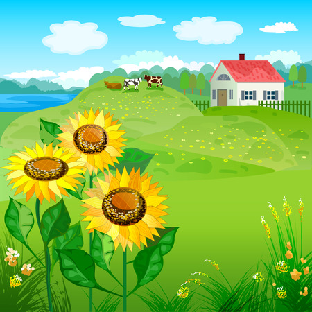 Beautiful natural landscapes with house and sunflowers Vector