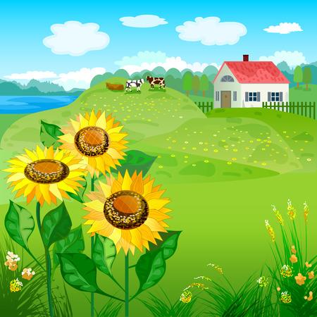 Schöne natürliche Landschaft mit Haus und Sonnenblumen