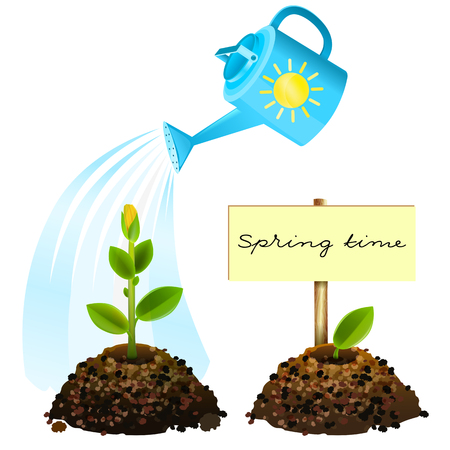 springtime: Flower watered from watering. Springtime