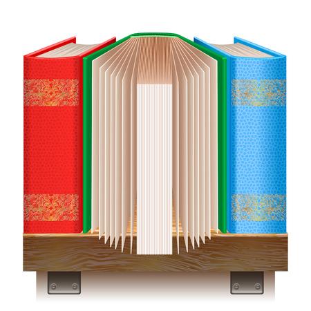 �tag�re bois: Livres sur une �tag�re en bois. Ic�ne pour votre site web. Isol� sur fond blanc