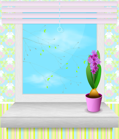 windowsill: Pot of hyacinth stands on the windowsill. spring time
