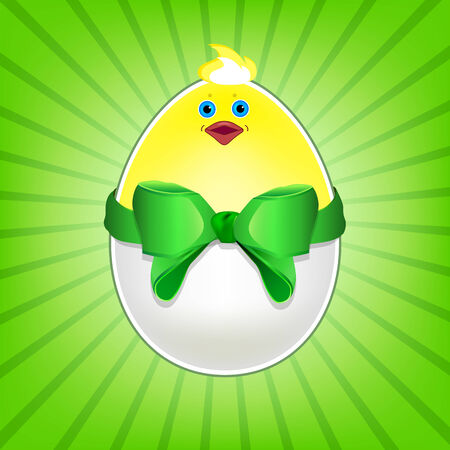 Chicken egg with bow. Funny chicken in eggshell Vector