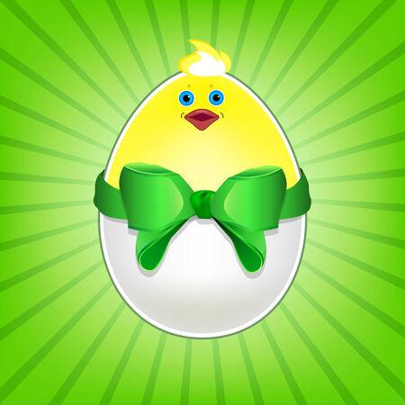 chicken egg: Chicken egg with bow. Funny chicken in eggshell Illustration