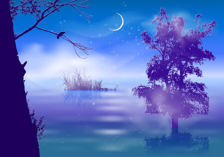 Night landscape with fog and trees submerged in water Vector