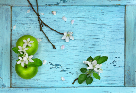 Green apples and apple flowers on blue wooden table Standard-Bild