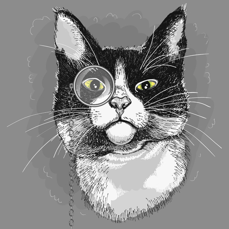 Portrait of a cat in a monocle. Illustration Illustration