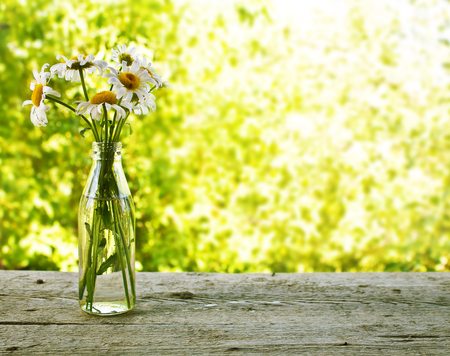 Bouquet of daisies in a bottle on a wooden table on a background of the garden
