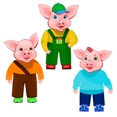 Three little pigs isolated on white background