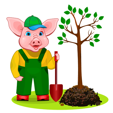 Funny piggy gardener planting a tree in the spring.
