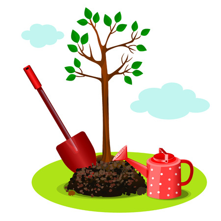 planting a tree in the ground. set garden instrument with tree.