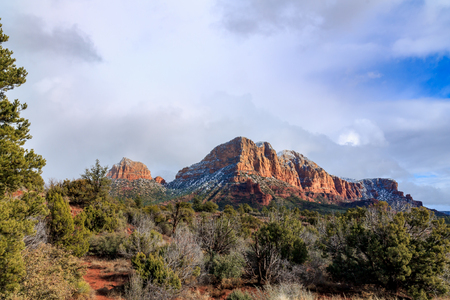 ponderosa pine winter: High desert forest and red sandstone formations in Sedona, Arizona