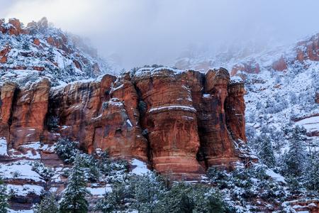ponderosa pine: Outcrop of Sedona, Arizonas red sandstone during a winter storm