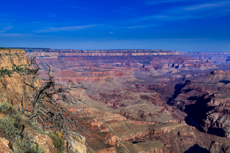 sensational: reathtaking morning view of the Grand Canyon.