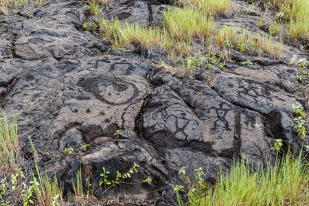 Petroglyphs  at Puuloa (Long Hill) along the Chain of Craters road, in volcano National Park on the island of Hawaii. The drawings are 400-700 years old. 版權商用圖片