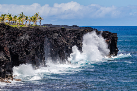 Large waves crashing against tall volcanic cliffs on Hawaii's Big Island. Grove of palm trees on top of the coastline; Pacific ocean, sky & blue clouds in the background. Фото со стока - 114920385