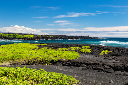 Black Sand beach (Punaluu) on the Big Island of Hawaii; black volcanic rock and with native vegetation (naupaka) in the foreground, blue ocean and waves in background.
