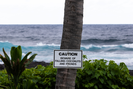 Warning sign posted on a palm tree at Black Sand Beach (Punaluu), on the Big Island of Hawaii. Behind is green vegetation, black lava rock and incoming waves of the Pacific Ocean.