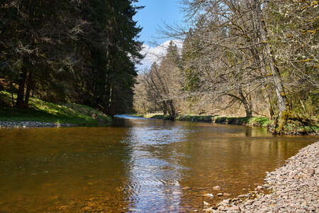 hiking in the river wutach canyon in the black forest in germany