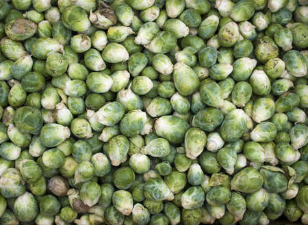 Brussels Sprouts - Organic produce on display at the Farmers Market.
