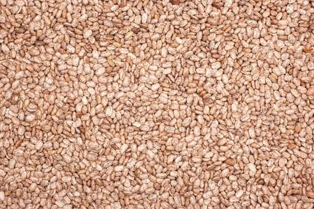 pinto bean:   Pinto Bean Background Stock Photo