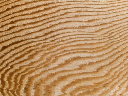 Macro stock photo de la texture du grain du bois.  Utile pour les masques de calque et des arri�re-plans abstraites.