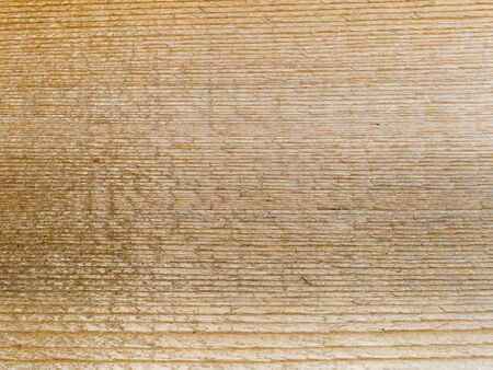 Stock macro photo of the texture of wood grain.  Useful for layer masks and abstract backgrounds. Stock Photo - 8051103