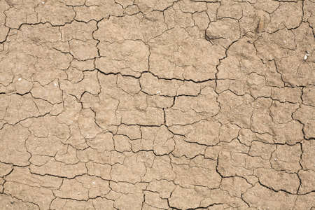 Cracked dirt texture, useful for backgrounds or layer effects