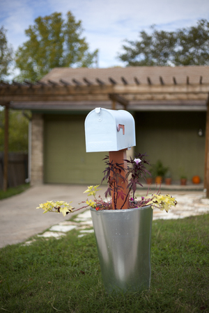 A cheerful mailbox in a planter with decorative plants and flowers