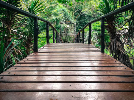 Bridge at Lanta Island National Park,Krabi,Thailand.