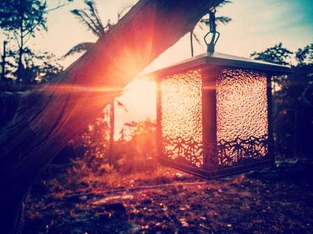 Sun shines at sunset through trees and lanterns.