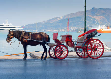 horse and carriage in port town waiting for driver and passengers photo