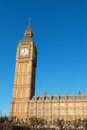 London Buses with Big Ben photo