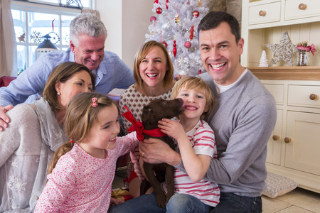 Three Generation Family at Christmas Time. Everyone is smiling and excited about the surprise puppy.