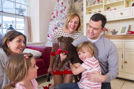 cuddles: Three Generation Family at Christmas Time. Dad holds up a brown puppy while the little boy cuddles in with happiness.
