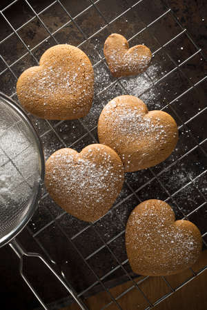 baking tray: Freshly made gingerbread heart cookies after they have been dusted with icing sugar on a baking tray