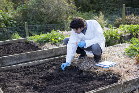 Young man testing soil in an allotment. He has a digital tablet with him for research. Archivio Fotografico