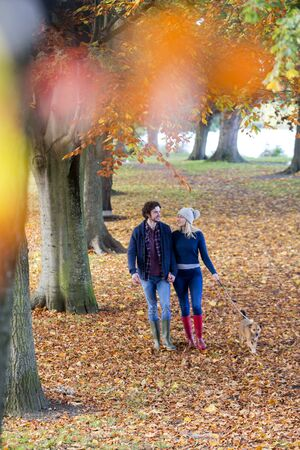 Young couple enjoying a walk together in Autumn. They are hand in hand and talking as they stroll through the park with their pet dog.