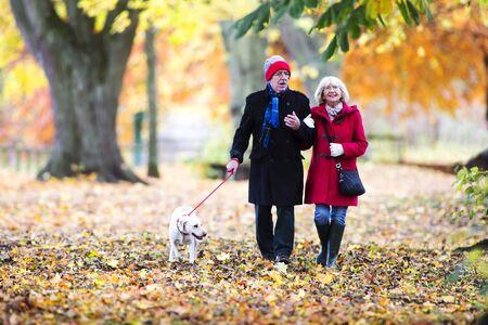 Senior couple are walking through the autumn woods with their pet dog.