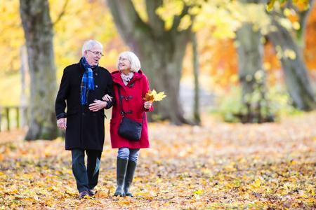 Het hogere paar loopt samen door de de herfsthout. De vrouw is arm in arm met haar man en draagt bladeren.