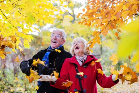 年配のカップルは、森の中で秋の散歩に出ています。葉を拾って、それらの周りの空気のそれらを投げます。
