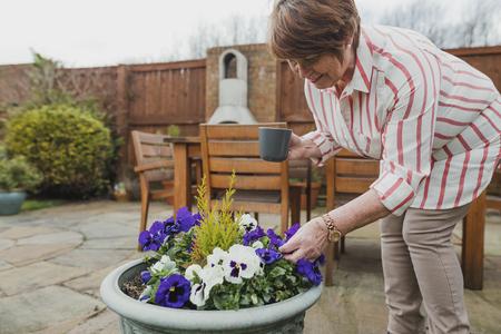 La donna anziana sta apprezzando i fiori che è cresciuta nel suo giardino mentre si gode una tazza di tè. Archivio Fotografico - 84956782