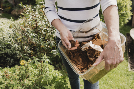 Unrecognisable woman in casual clothing holding a box of used coffee ground to use as compost in her garden. Stock Photo