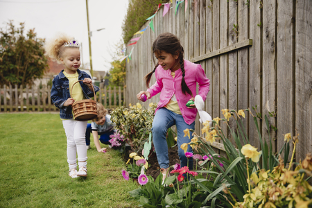 Two little girls searching for chocolate easter eggs in a back garden. They are looking in the flower bed, next to the daffodils.