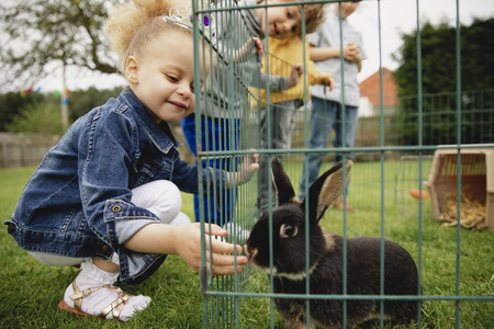 Little girl feeding a pet rabbit through the gap in the cage. She is smilig with happiness letting the rabbit smell her hand.