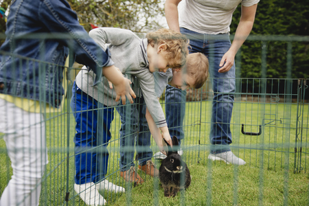 Group of children kneeling outdoors next to a rabbit pen. They are leaning over the fence to pet the rabbit.